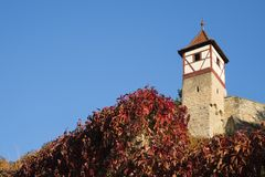 City wall with tower in Bad Wimpfen, Germany royalty free stock photography