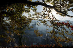 Autumn leaves, tree brunch, Cesky Krumlov. Backlight Royalty Free Stock Photos