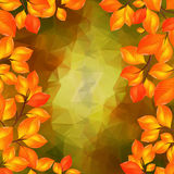 Autumn leaves with triangle background Stock Image