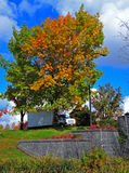 Autumn leaves with truck stock photo