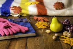 Autumn Leaves und Decke Lizenzfreies Stockbild