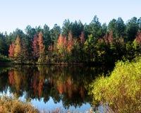 Autumn Leaves und Farben reflektierten sich in einem ruhigen Teich Stockbilder