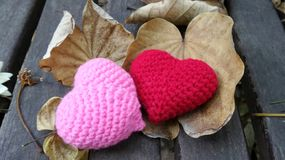 Autumn leaves and valentine hearts Stock Photos