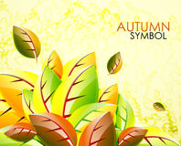 Autumn leaves vector background Stock Photos