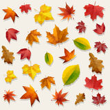 Autumn Leaves Vector Background volant rouge jaune-orange Photo libre de droits