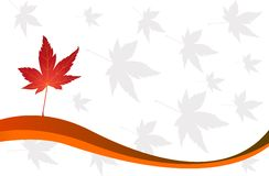 Autumn leaves vector illustration Stock Images