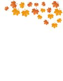 Autumn leaves vector illustration Royalty Free Stock Photography