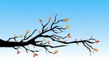 Autumn leaves vector illustration Stock Photos