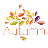 Autumn leaves vector illustration abstract. Royalty Free Stock Images
