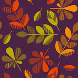 Autumn leaves vector illustration abstract. Stock Photo