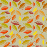 Autumn leaves vector illustration abstract. Stock Images