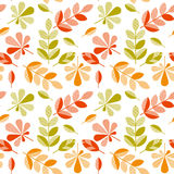 Autumn leaves vector illustration abstract. Stock Photography