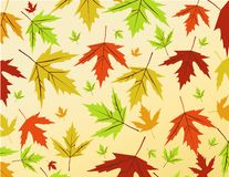 Autumn leaves vector illustration Stock Image