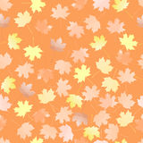 Autumn leaves. vector seamless pattern. brown background. Maple leaves. vector seamless pattern. autumn background Royalty Free Stock Photography