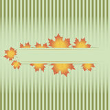 Autumn leaves. Vector seasonal background Royalty Free Stock Photos