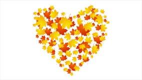 Autumn leaves video animation stock footage