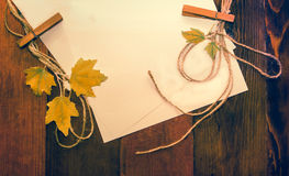 Autumn leaves vintage effects. Royalty Free Stock Photos