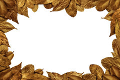 Autumn Leaves vintage frame Royalty Free Stock Images