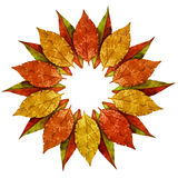 Autumn leaves vintage golden frame Royalty Free Stock Photography