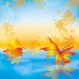 Autumn leaves on water, nature background. Autumn leaves on blue water, beautiful nature background vector illustration