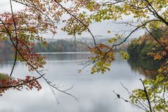 Autumn Leaves on Waterbury Lake. A calm foggy Autumn morning on the Waterbury Reservoir in Waterbury, Vermont Royalty Free Stock Photo