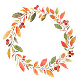 Autumn leaves watercolor decorative wreath Stock Photos
