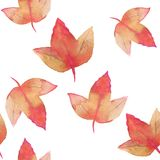 Autumn leaves. Watercolor floral background. Hand drawn seamless floral pattern Stock Image