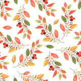 Autumn leaves watercolor seamless pattern Royalty Free Stock Photography