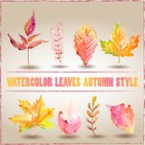 Autumn leaves, watercolor Stock Photo