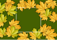 Autumn leaves. In watercolor style royalty free illustration