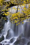 Autumn leaves and waterfall Royalty Free Stock Images