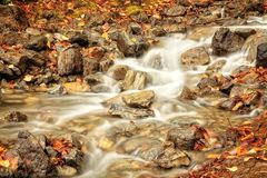 Autumn Leaves in a Waterfall. Autumn colors in a waterfall near Glacier National Park and the Hungry Horse Reservoir Royalty Free Stock Images