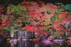Autumn leaves and waterfall of Japanese garden at night. stock photo