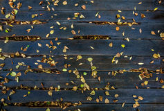 Autumn leaves on the wet boards. Yellow autumn leaves on the wet boards Stock Photos
