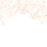 Autumn leaves on white background. plus EPS10 Stock Photography