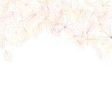 Autumn leaves on white background. plus EPS10 Stock Photography