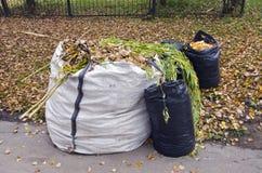 Autumn leaves in white and black plastic sacks Stock Photos