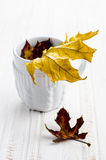 Autumn leaves in a white cup. On a white wooden table Royalty Free Stock Photography