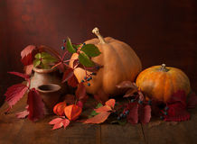 Autumn leaves , wild berries, physalis and a pumpkins. On  the old wooden table Royalty Free Stock Photos