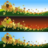 Autumn Leaves in the wind. Tree leaves forming decorative figures Stock Photo