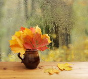 Autumn leaves on window sill Stock Images