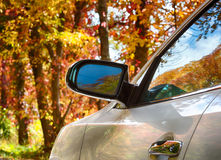 Autumn leaves from wing mirror on car Royalty Free Stock Photo