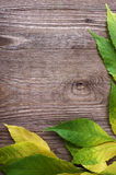 Autumn leaves on wood Stock Photos