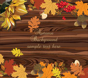 Autumn Leaves on wood background Royalty Free Stock Photo