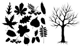 Autumn leaves and wood black silhouette stock illustration