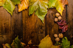 Autumn leaves on wood board Stock Photography