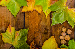 Autumn leaves on wood board Stock Photos