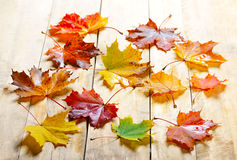 Autumn leaves on wood Royalty Free Stock Photography