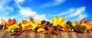 Autumn leaves with wood planks and sky Royalty Free Stock Photo