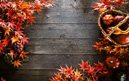 Autumn leaves on wood. Red autumn royalty free stock image